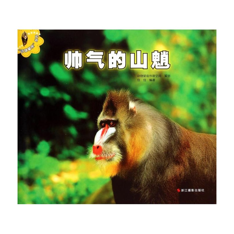 【帅气的山魈/动物星座丛书图片】高清图