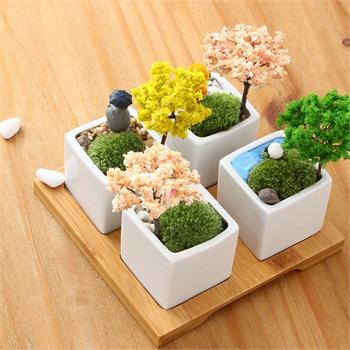 创意苔藓迷你微景观绿植可爱小盆栽办公桌diy摆件新奇