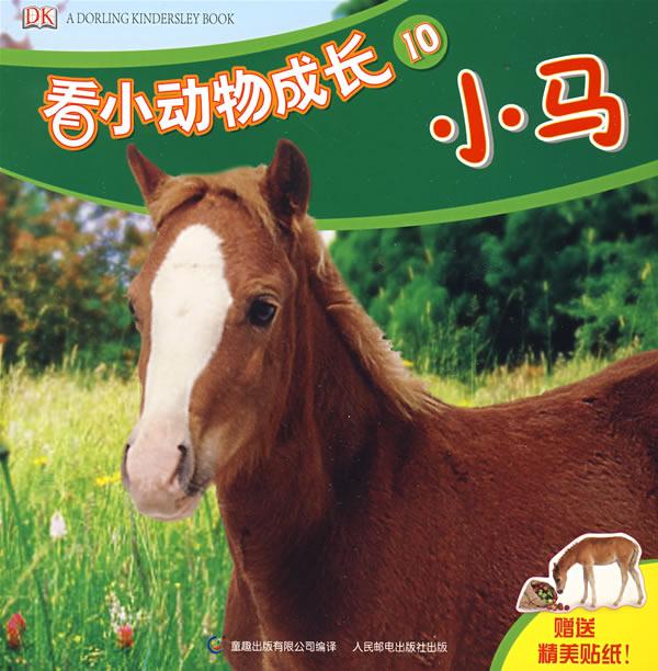 看小动物成长10:小马