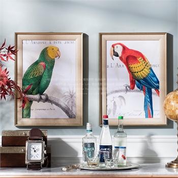 奇居良品欧美式家居动物墙面装饰画挂画壁画客厅餐厅鹦鹉手稿