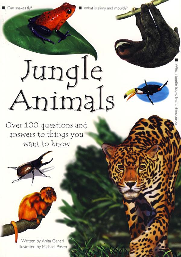 雨林中的动物 jungle animals