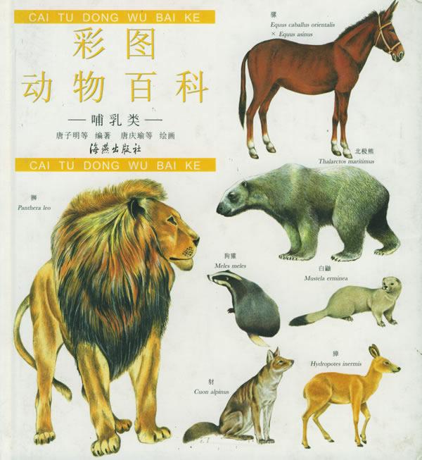 彩图动物百科:哺乳类