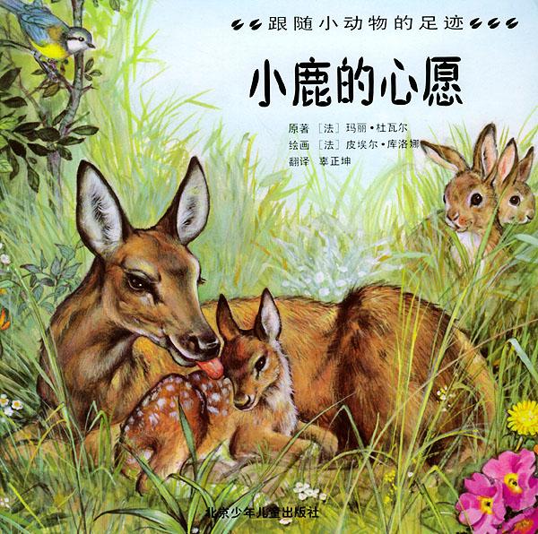 小鹿的心愿——跟随小动物的足迹/注音版