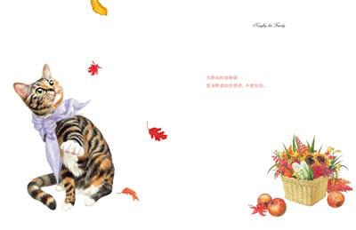 韩国手绘小清新插画 猫咪