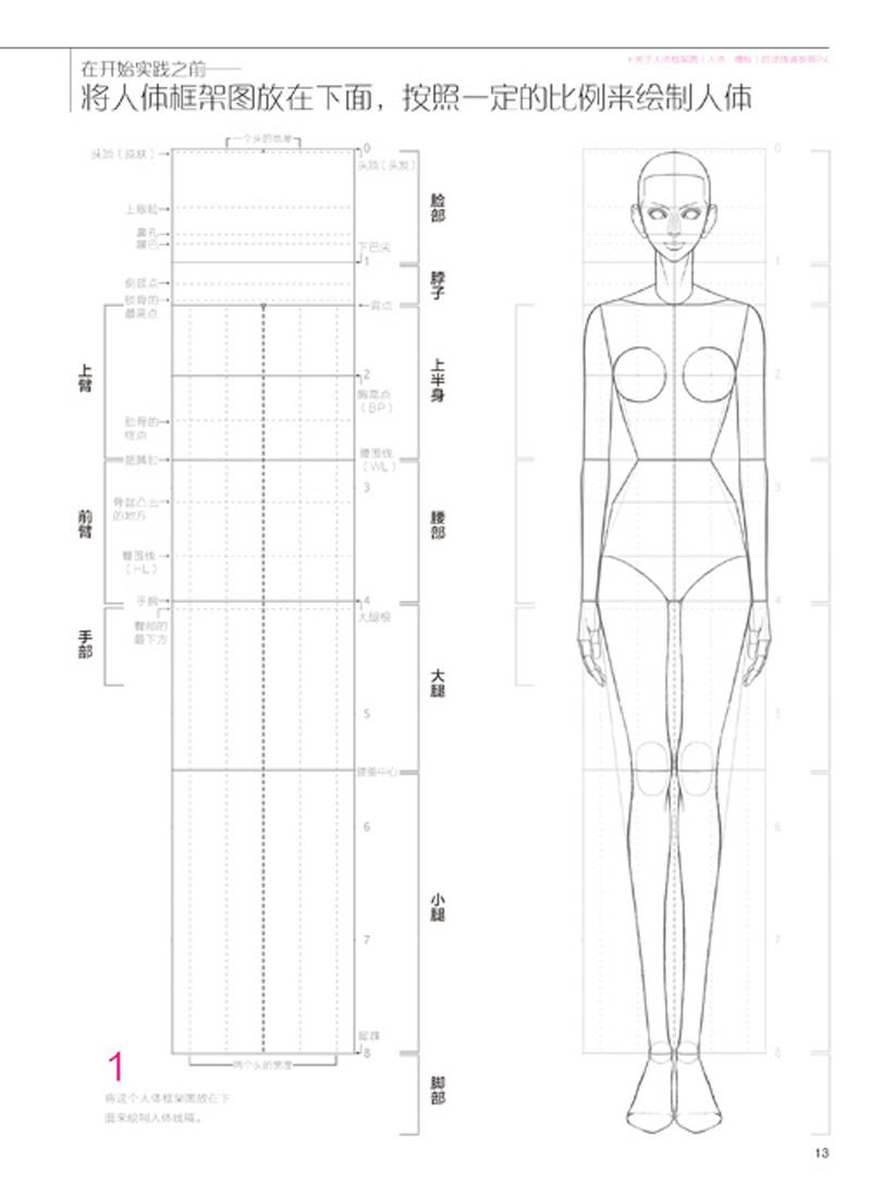 人体平面图图片简单