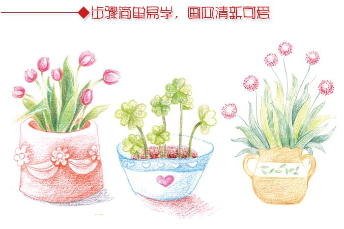 盆景 盆栽 植物 700_466
