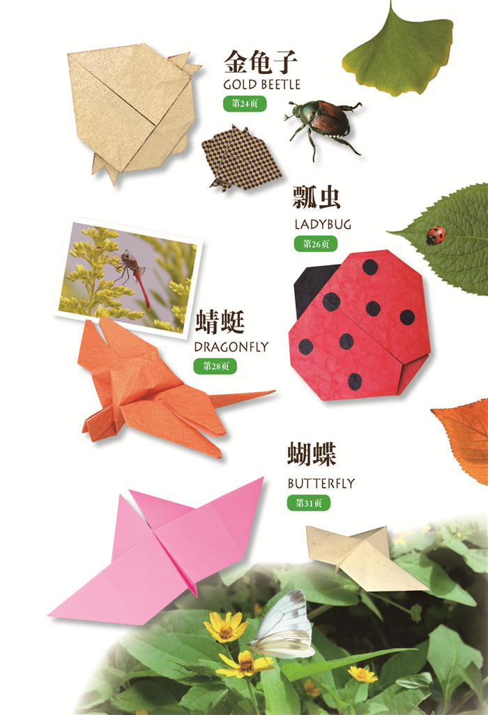 一起动手做昆虫折纸