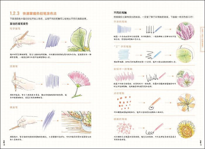 《色铅笔的温情手绘,我的花花草草》