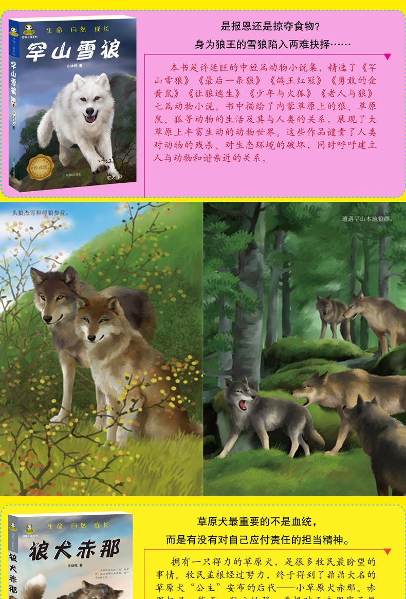 倔小孩动物小说系列(全书共10册)