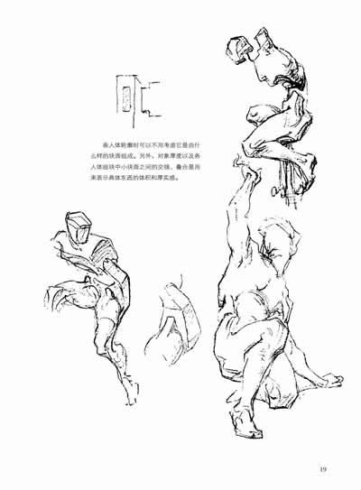 伯里曼人体结构绘画教学(最新第三版)