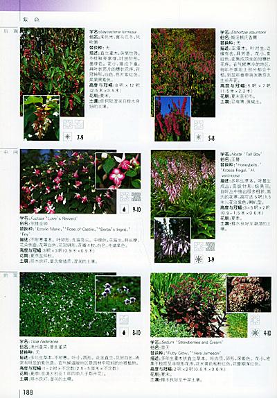 观植物色彩搭配》(