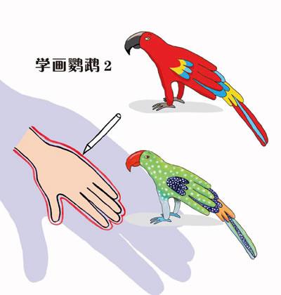 指导孩子经过简单的描画,让一个物体变化派生出许多有趣的动物,鸟类