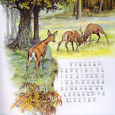 小鹿的心愿 跟随小动物的足迹 注音版; 跟随小动物的足迹3:小鹿的心愿