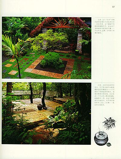 附录2:雨季开花的乔木和灌木 书摘与插画